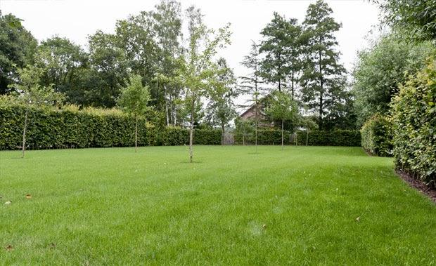 le tapis vert l entretien d une pelouse comment a marche. Black Bedroom Furniture Sets. Home Design Ideas