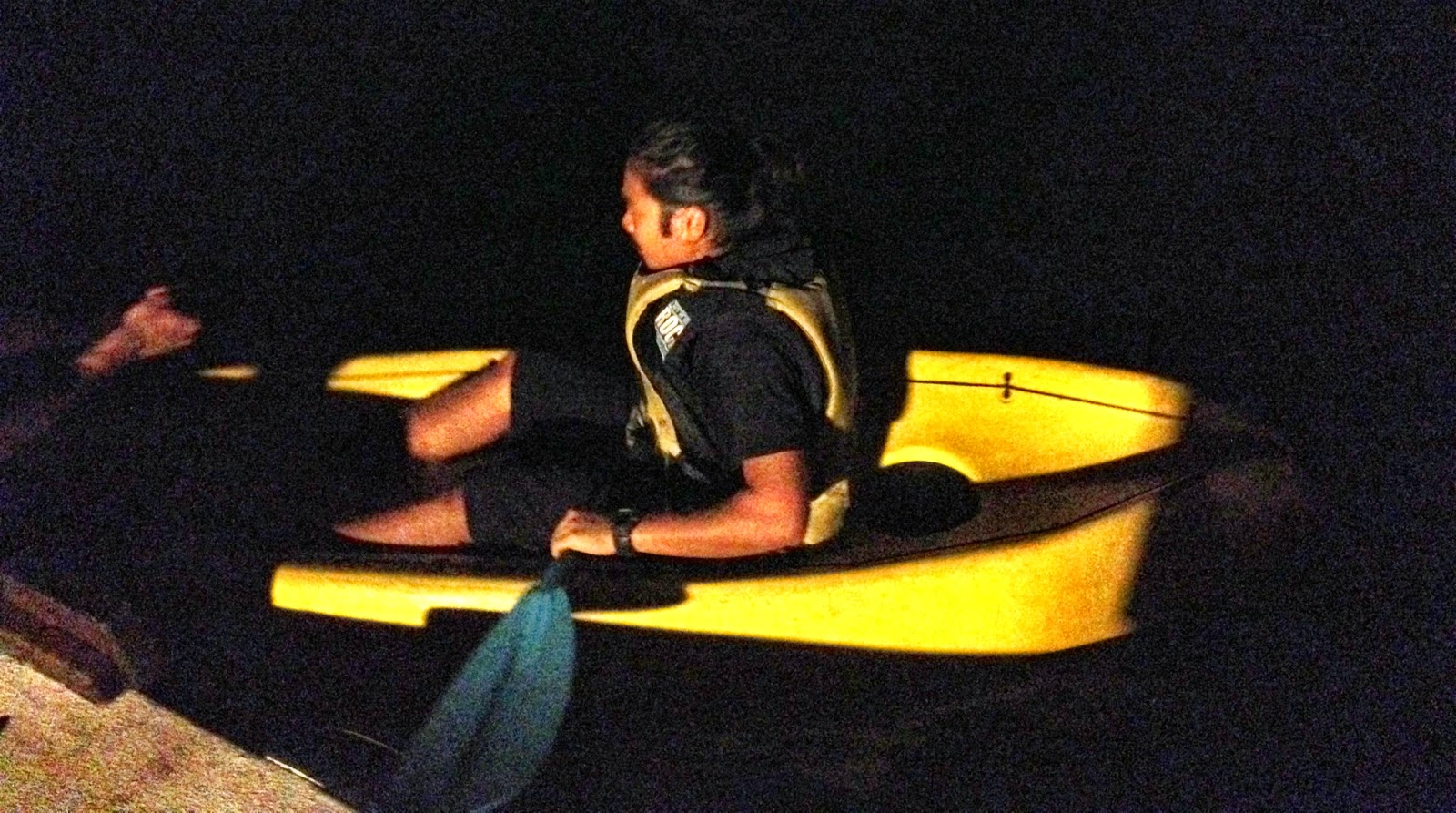 Night kayaking in the Bay of Islands - Topdeck Travel