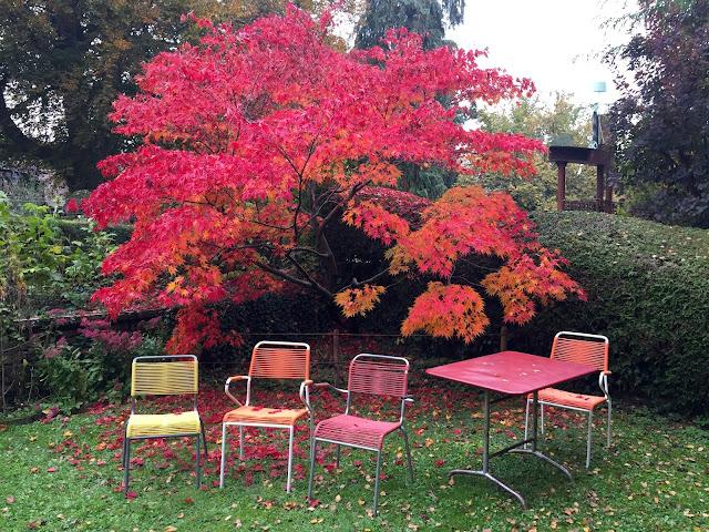 jardins auberge aux 4 vents best brunch suisse Fribourg