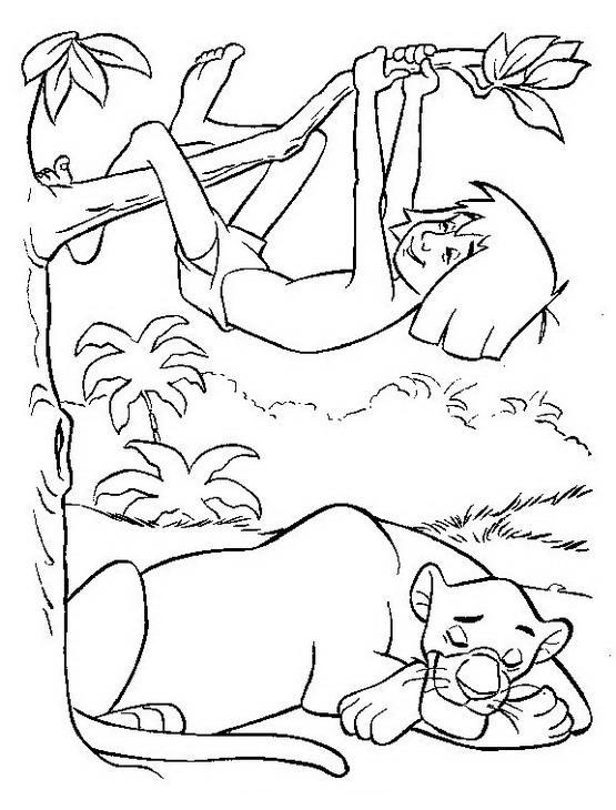 Cinema E Teatro Il Libro Della Giungla The Jungle Book Mowgli