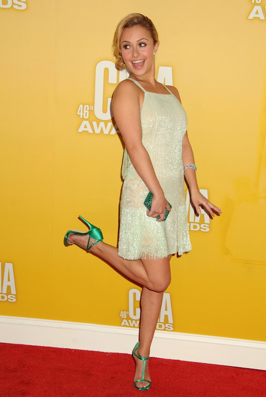 Hayden Panettiere strikes a hot pose on the red carpet