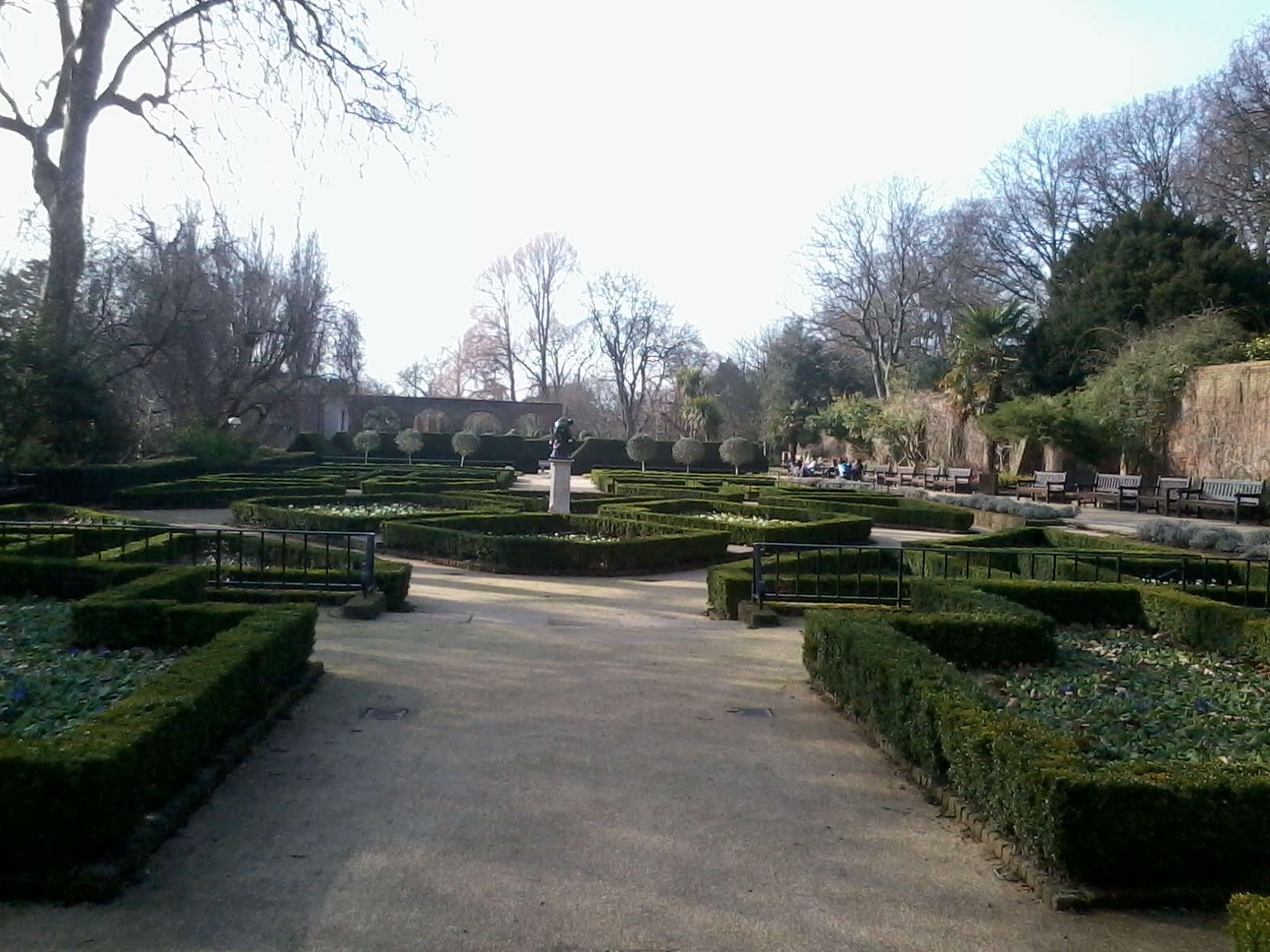 Manicured garden in the sun.