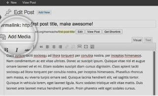 multimedia in blogs