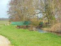 Etang de Chouzy-sur-Cisse : le pont