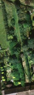 How do you reclaim back an overgrown garden or plot #newgardenerseries