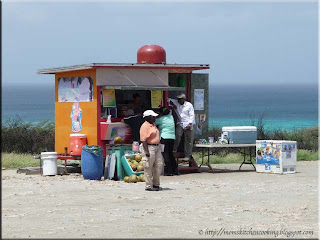 the roadside coconut stand