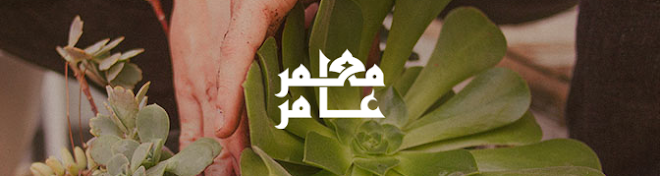 مدونة معمر عامر