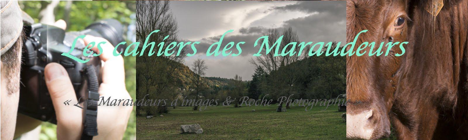 Cahiers des Maraudeurs d'images
