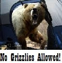 Kiki's Grizzlies