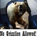 Kiki's Grizzlies