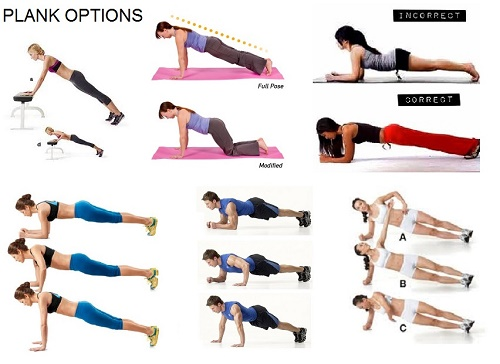 Plank Exercises. Traditional, Modified & Side Plank Poses