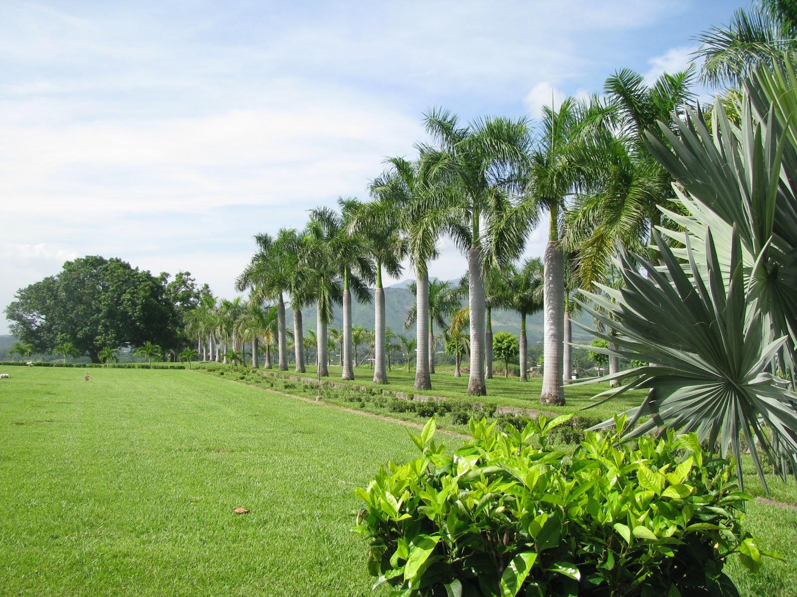 Parque jard n los olivos cementerios privados vs for Cementerio parque jardin del sol pilar