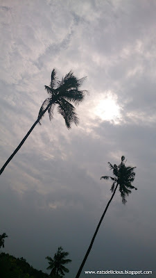 Olango Island in Cebu travel diary bask in nature
