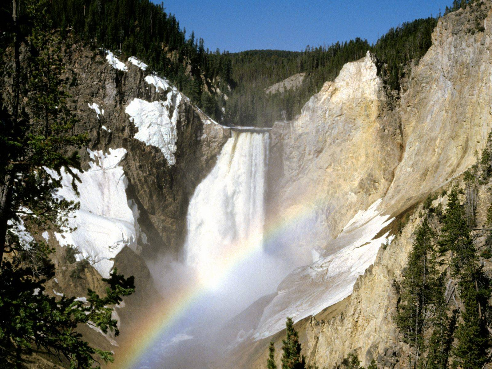 The beauty of the famous yellowstone national park usa