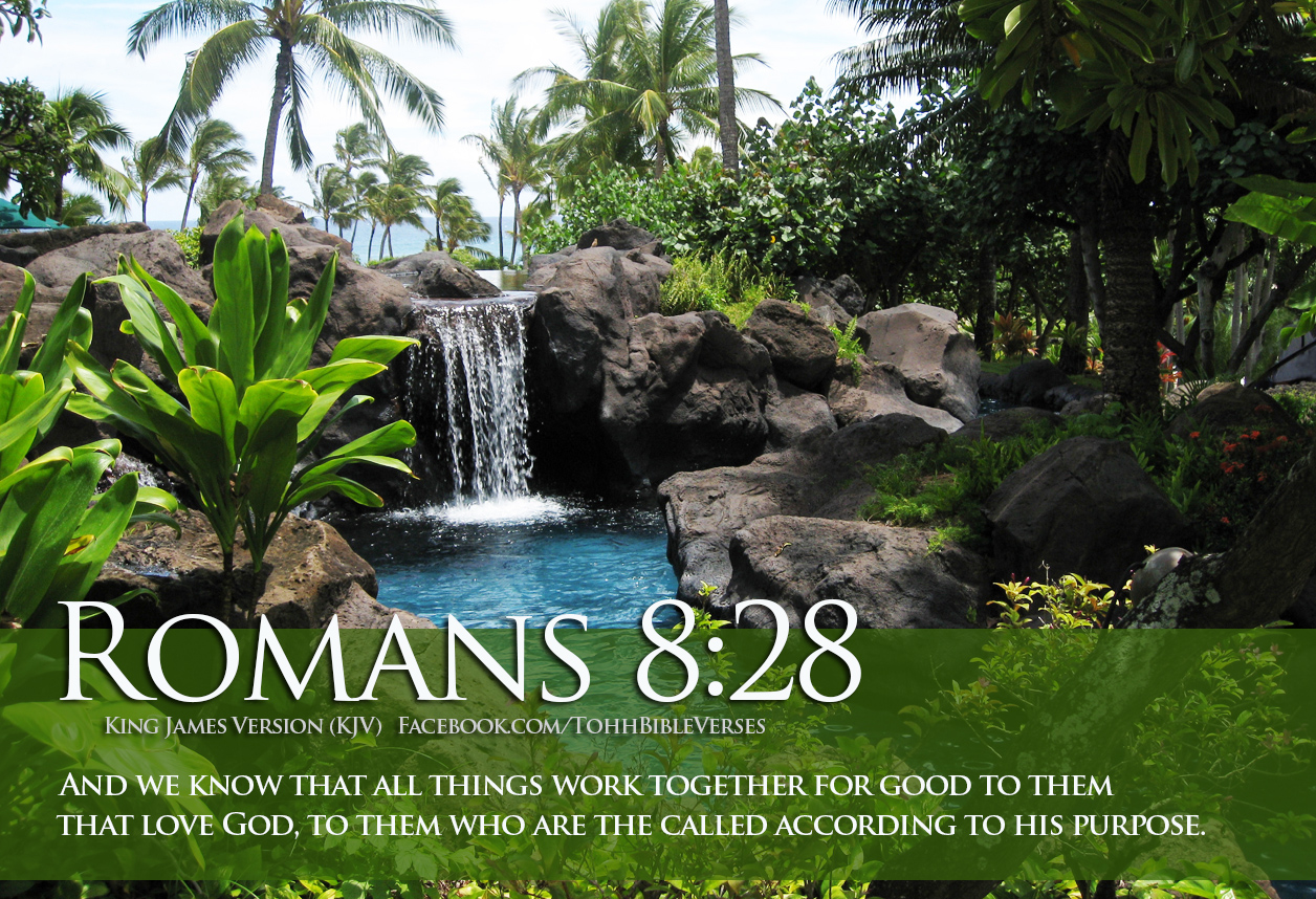 spring wallpaper with bible - photo #33