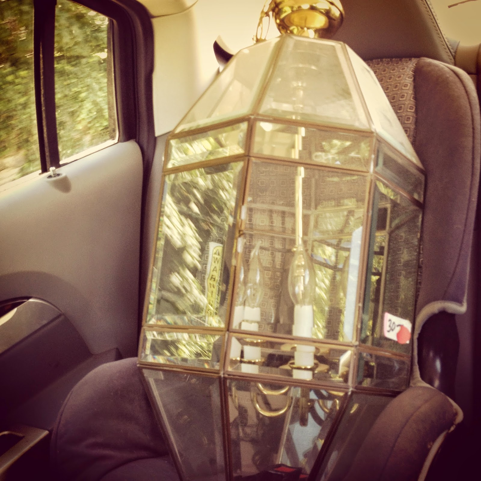 Em And Me: Contractor Chandelier Terrarium