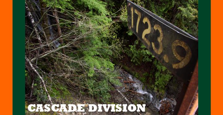 Cascade Division
