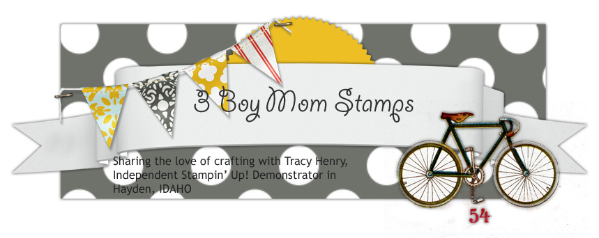 3 Boy Mom Stamps