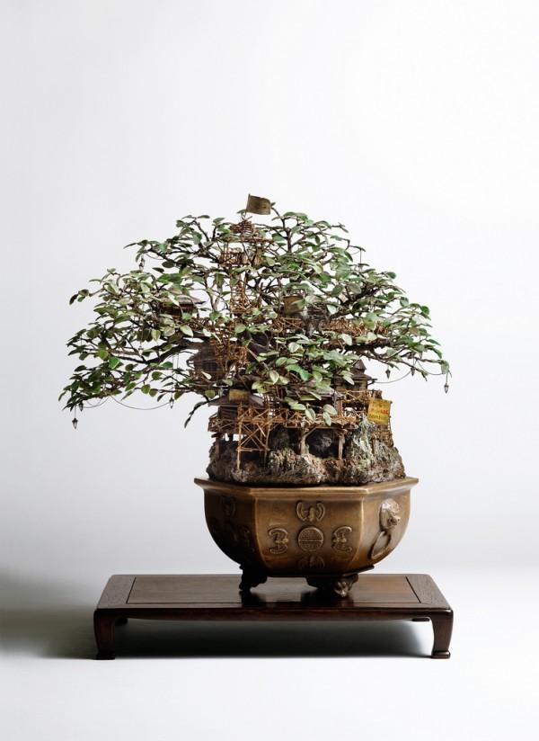 SmileCampus - Bonsai Tree Houses