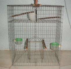 Cara Membuat Sangkar Burung