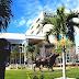 University Of South Florida St. Petersburg - St Petersburg University Florida
