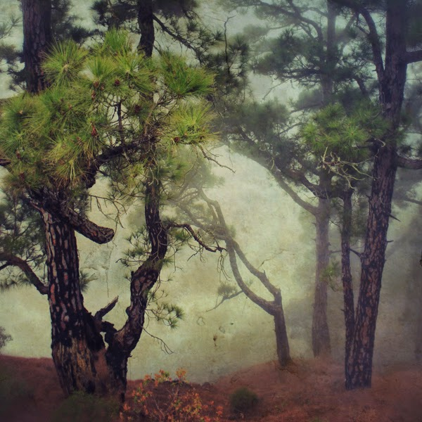 landscape,art Photo, contemporary art, venta de obra seriada, Lopez Moral, pictorialism, entrefotos, matadero madrid