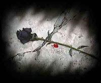 Frases de Amor,  Frases de Carinho, Mensagem de Amor, Alfred Tennyson, Possível, Tristeza, Dor, Amor,