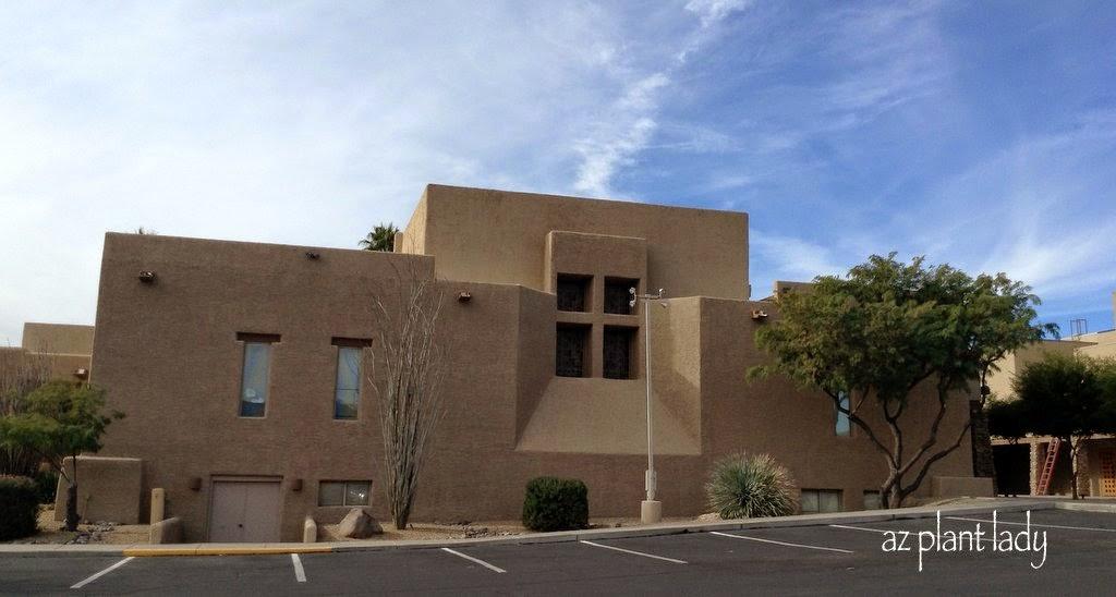 Ramblings from a desert garden church landscape for Landscape renovations