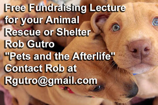 Attn Animal Rescues- I Will Give a free Fundraising Lecture for you!