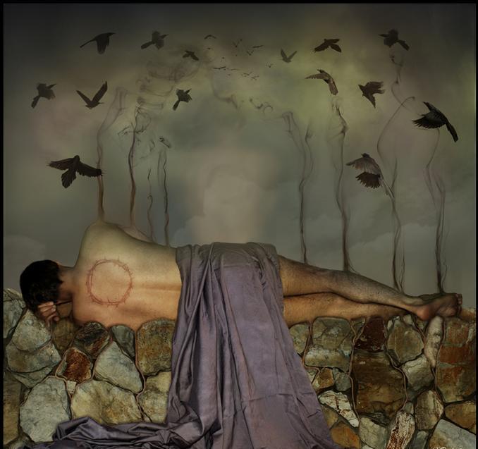 O silêncio das asas