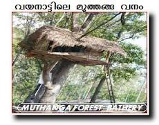 MUTHANGA FOREST WAYANAD