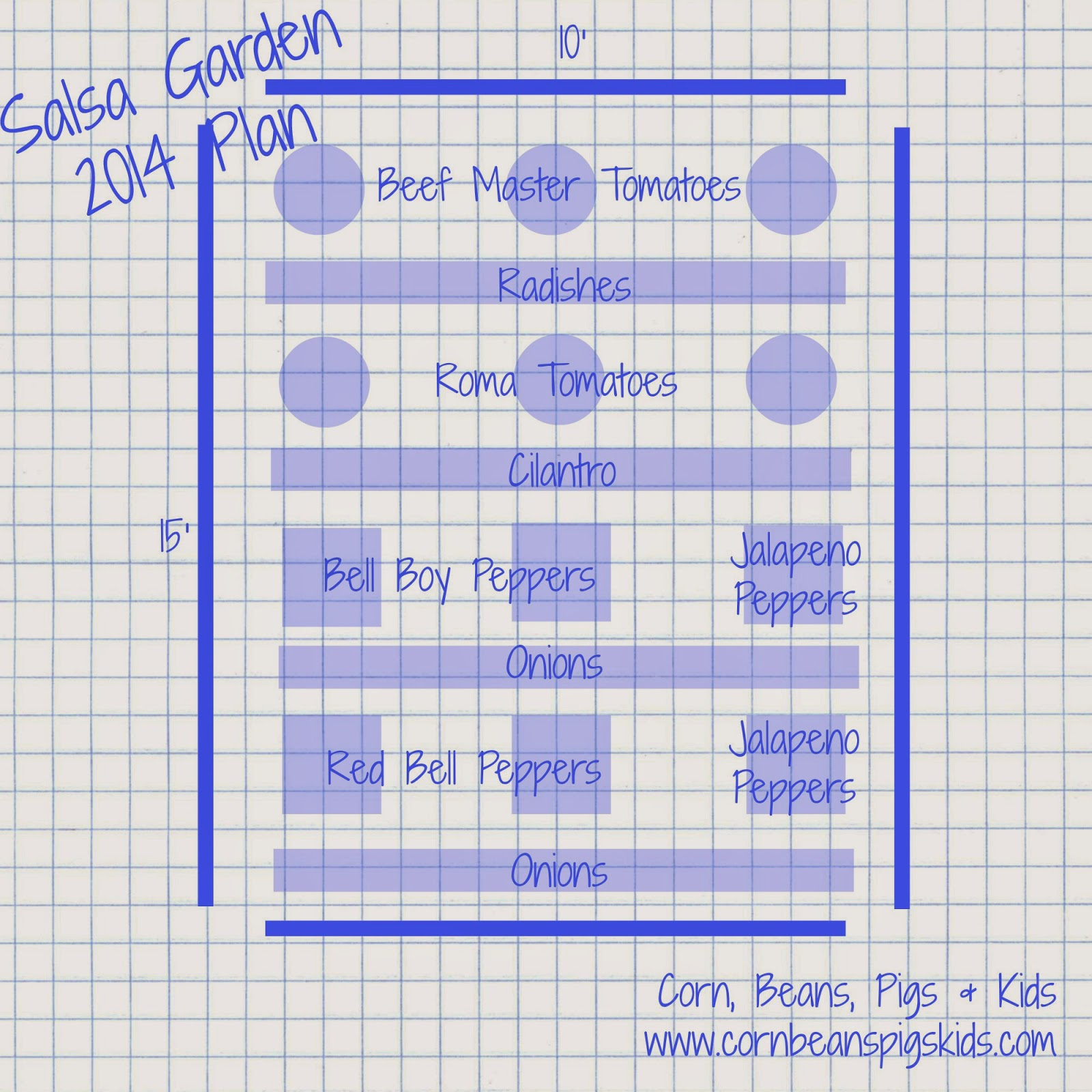 Salsa Garden Plan - Intercropping Vegetable Garden