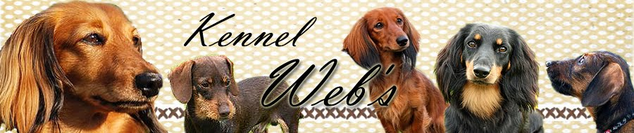 Kennel Web's