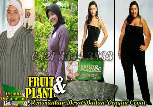 Fruit n Plant Adalah Obat Pelangsing Badan Yang Terbuat Dari Bahan Herbal Yang Berguna Untuk Melangsingkan dan Menurunkan Berat Badan.