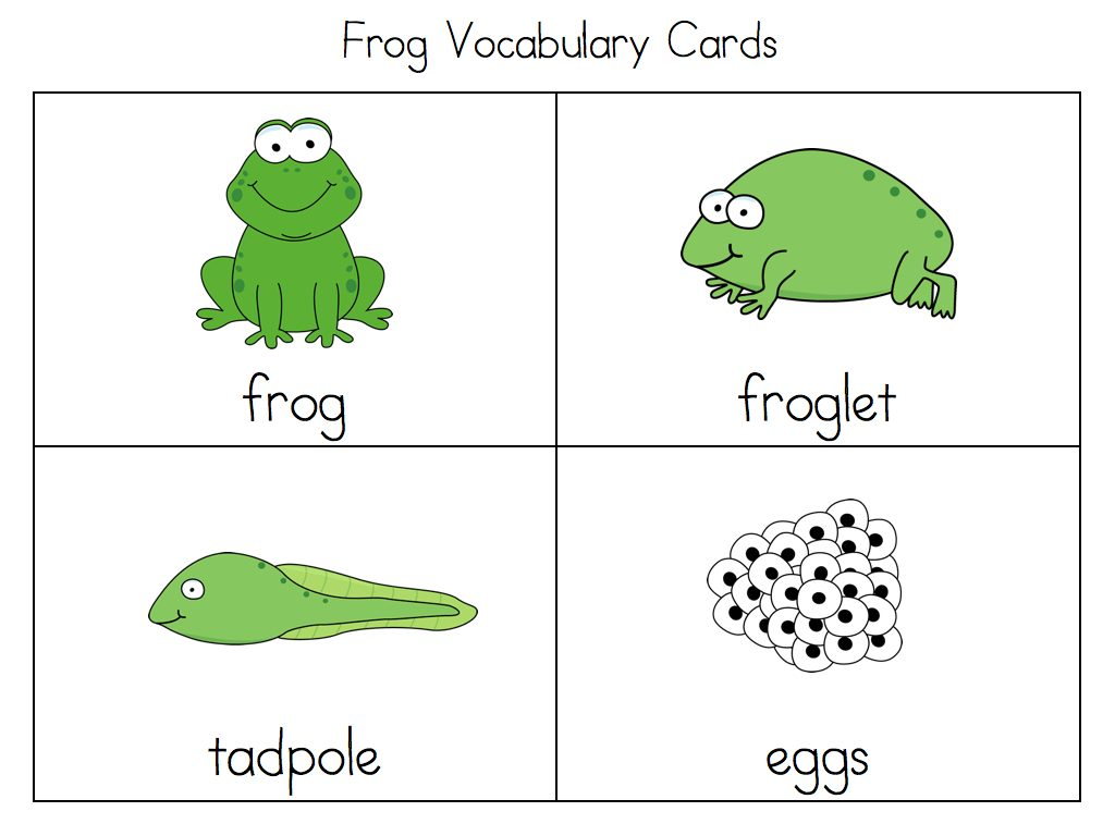 Uncategorized Life Cycle Of A Frog Worksheet frog life cycle worksheet cut and paste photo25