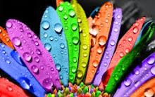 الألوان تتكلم