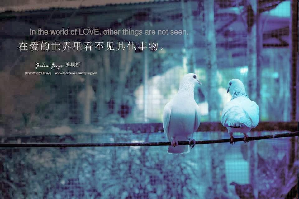 郑明析,摄理,爱,Joshua Jung, Providence, Love