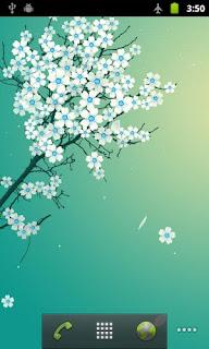 Wallpaper Live လွလွေလးၾကိဳက္သူမ်ားအတြက္ Sakura Live Wallpaper apk