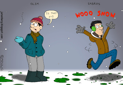 winter minor snow fall three inches patches of grass olim disappointed confused is that it sabras excited wooo dancing