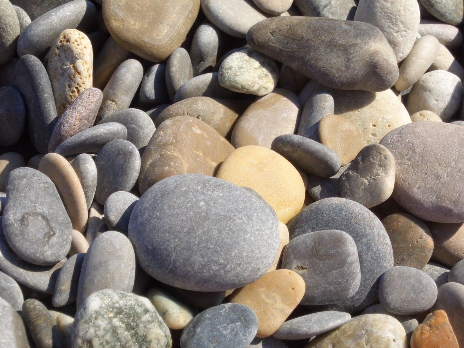El gran compendio escalaf n 2 el l mite animal - Tipos de piedras naturales ...
