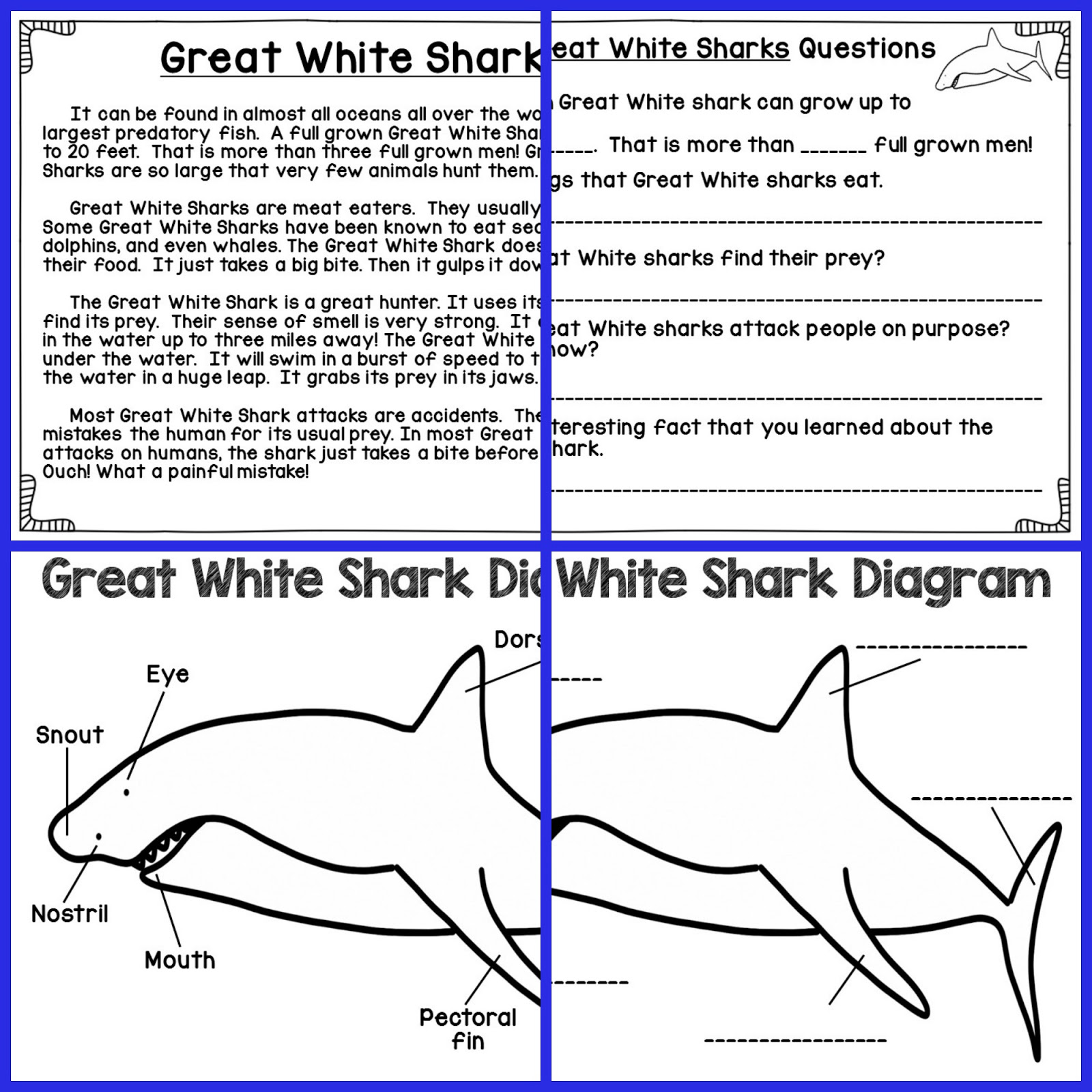 Fill Blank Shark Diagram - Introduction To Electrical Wiring Diagrams •