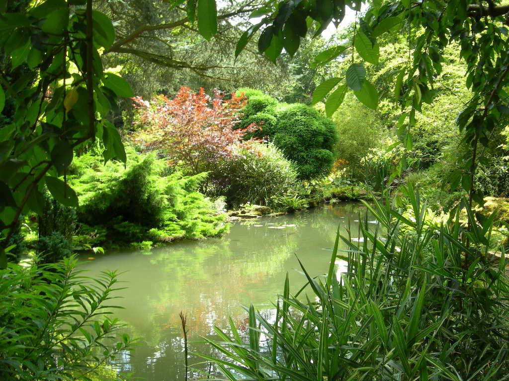 Secret garden for Garden