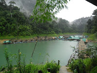 Khao Sok Nationalpark, jungle, adventure, lake, cheow lan lake, khao sok, khao lak, mountains, limestone