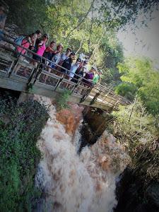 Retiro 2015 Workshops en la selva