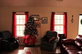 Well, at least we got the tree somewhat decorated!