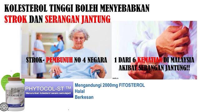 phytocol-st