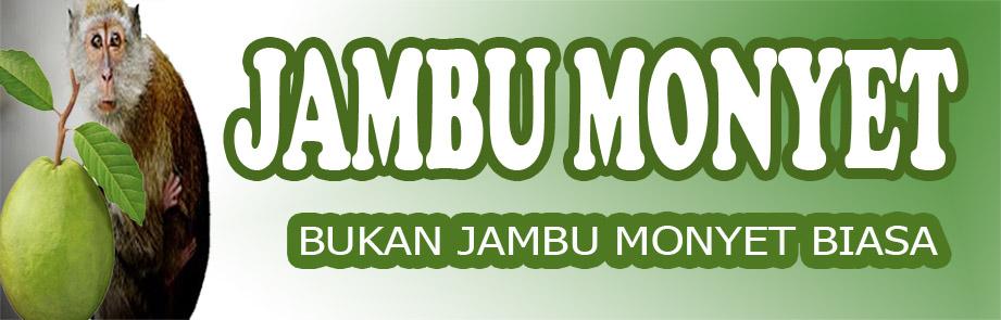 JAMBU MONYET