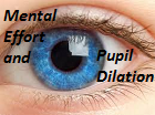Mental effort and pupil dilation