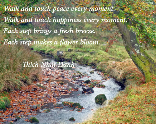 Image result for thich nhat hanh quotes peace is every step