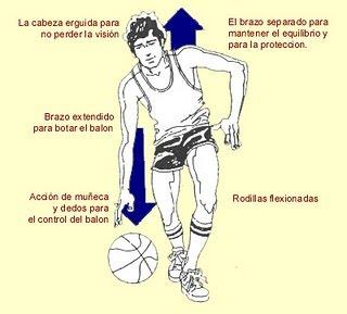 velocidad en el voleibol: